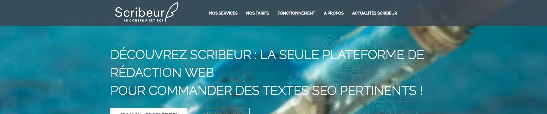 Avis-Scribeur-_-rédacteur web